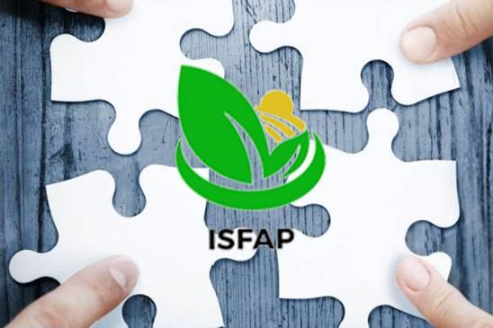 ISFAP Puzzle